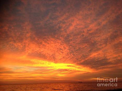 Florida Sunset by Anita Wexler
