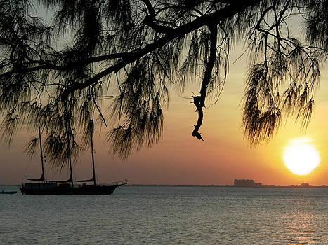 Florida Sunset by Charlotte Craig