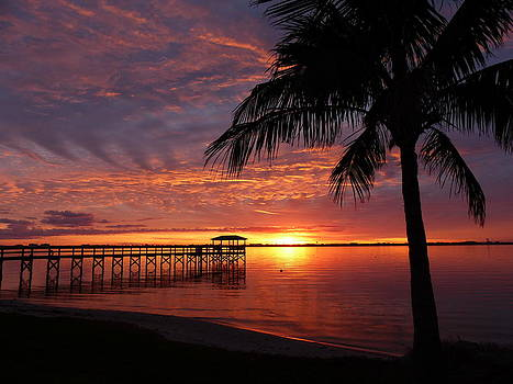 Florida Sunset by Elaine Franklin