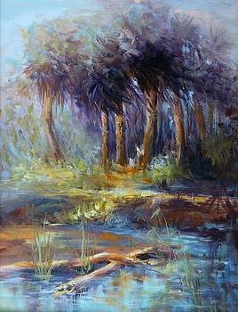 Florida Swamp by Christa Friedl
