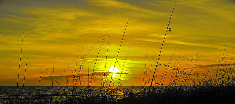 Floridian Sunset by Ernesto Gomez