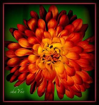 Flourish  by Shayne Johnson Fleming
