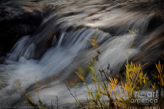 Flow by Debra K Roberts