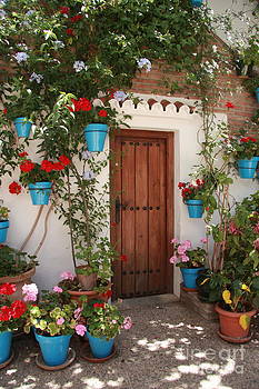 Flower and Door by Sonia Conforti