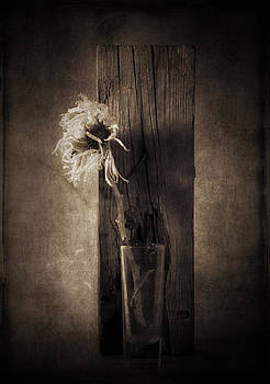 Flower and Wood by Jim Larimer