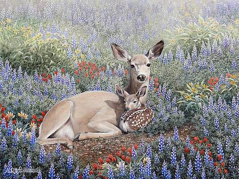 Flower Bed by Mike Stinnett