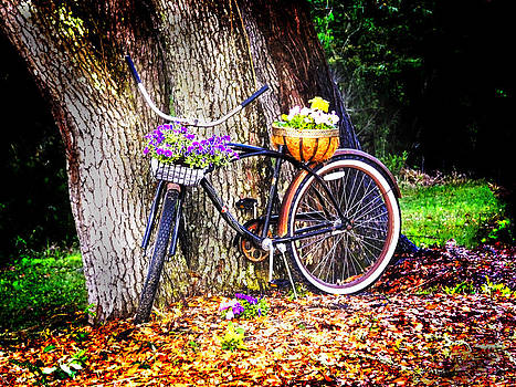 Terry Shoemaker - Flower Bicycle