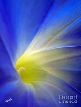 Flower Blues by Joy Tudor