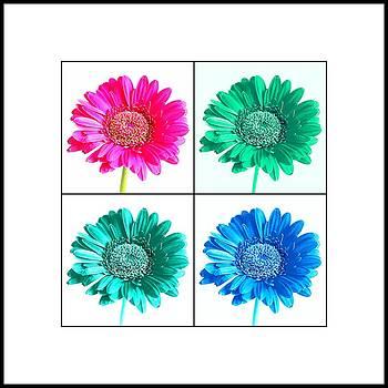 Bishopston Fine Art - Flower Collage 3