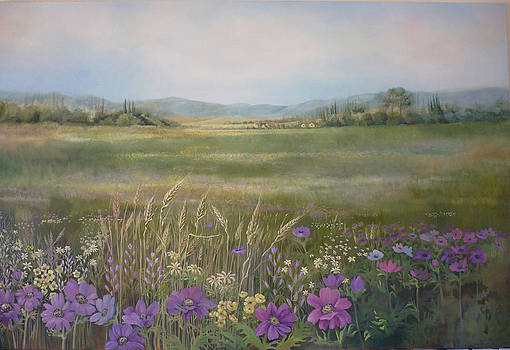 Flower Field by Caroline Philp