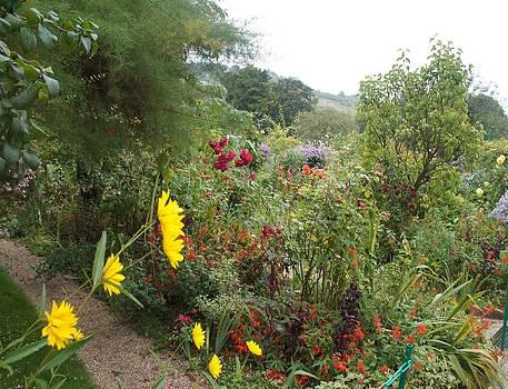 Flower Garden II by Kristine Bogdanovich