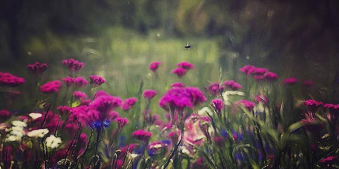 Flower Garden by Kim Zier