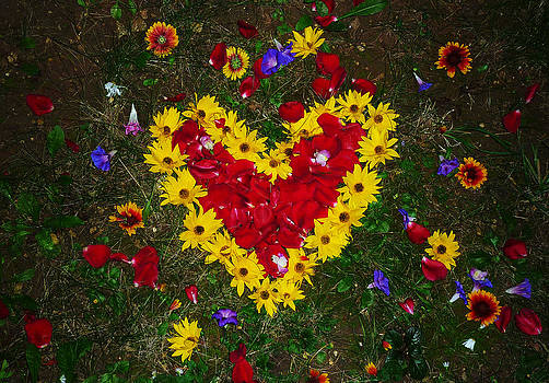 Flower Heart by Peter Berdan