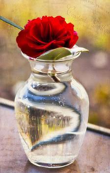 Flower In A Vase by Joan Bertucci