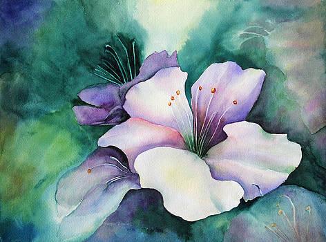 Flower in full bloom by Georgia Pistolis