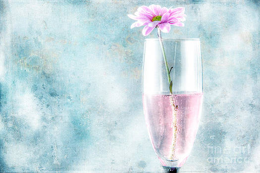 Flower in the Drink by Lori Frostad