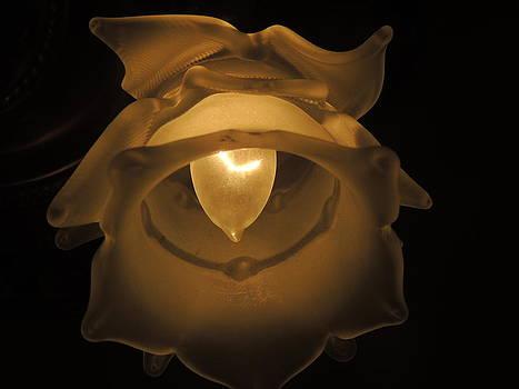 Anastasia Konn - Flower Lamp