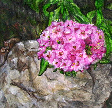 Flower Leaning on Rock by Jan Wendt