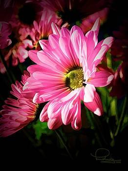 Ludwig Keck - Flower
