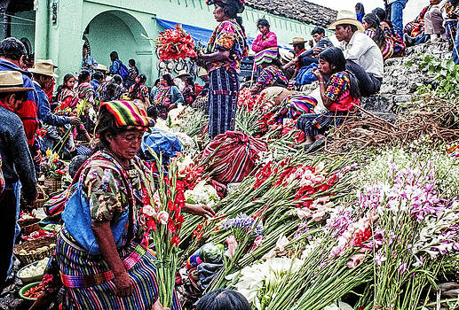Flower Market 2 by Tina Manley