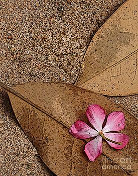 Flower on Leaf by Susan Cliett