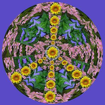 Anne Cameron Cutri - Flower Peace Sign