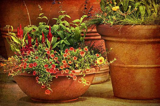 Nikolyn McDonald - Flower Pots
