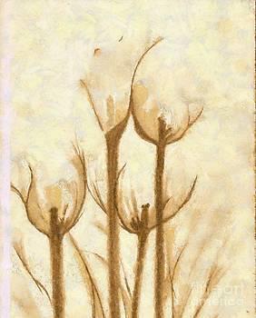 Flower Sketch by Yanni Theodorou