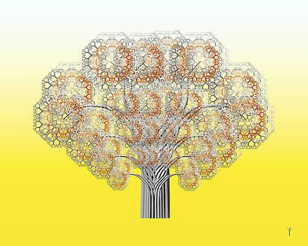 Flower Stems 02 by Chris Whitside