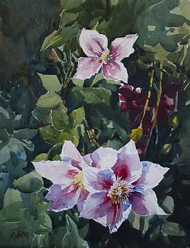 Flower_07 by Helal Uddin
