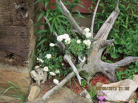 Flowerbed by Diane Mitchell