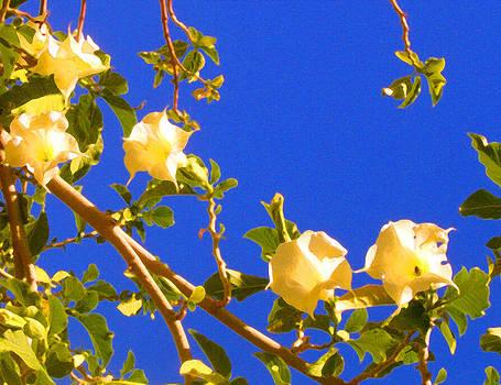 Amy Vangsgard - Flowering Tree 1