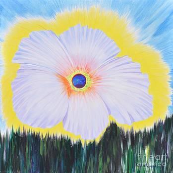 Flowering Universe by Kimbrella  Studio