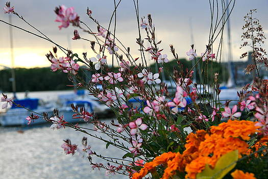Flowers and boats by Xanat Flores