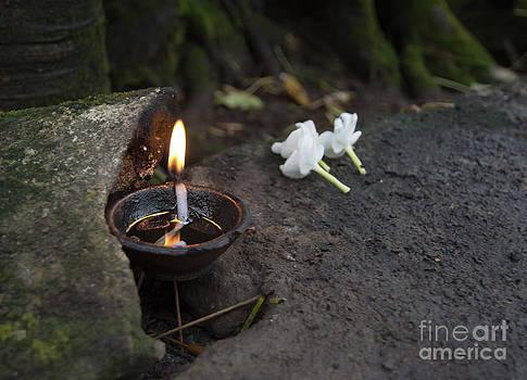 Flowers and oil burning  by Christina Rahm