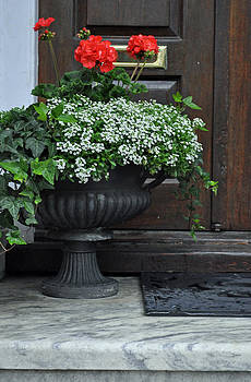Flowers in Front of a Door in Charleston by Bruce Gourley