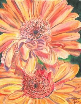 Flowers in Pastel by Sarah Lowe