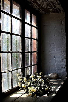 Flowers in the window. by Ian  Ramsay