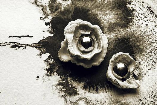 Flowers of the ocean by Rohan Sandhir