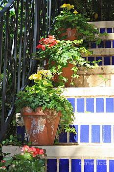 Danielle Groenen - Flowers on Stairway