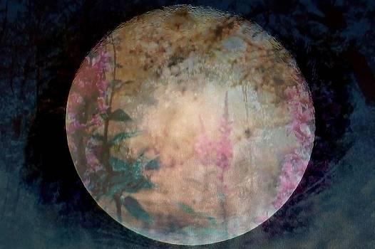 Rick Todaro - Flowers On The Moon