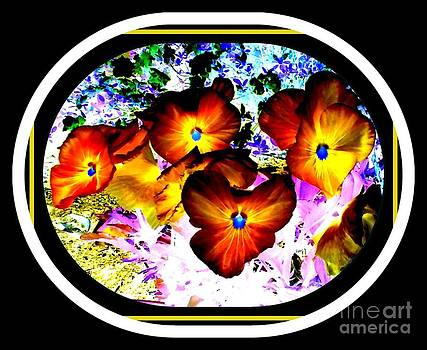Flowers reversed color by Cindy New