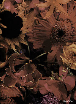 Flowers Series # 7 by David Lee