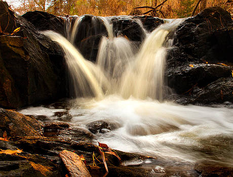 Flowing Beauty by LB Christopher