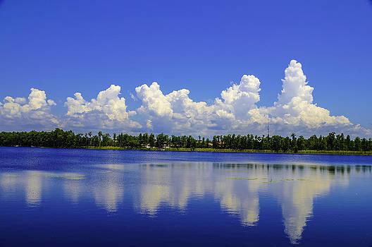 Fluffy White clouds by Ernesto Gomez