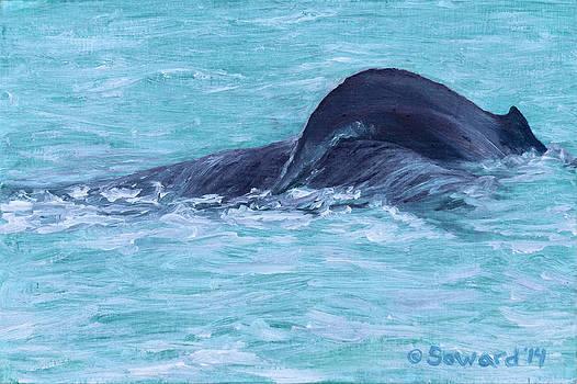 Fluke 1 by Sarah Soward