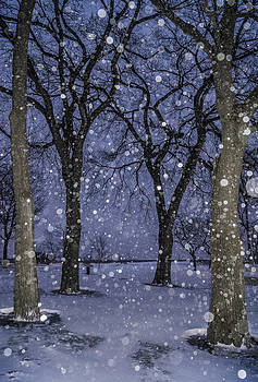 Arkady Kunysz - Flurries and trees