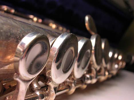 Flute by Susan Porter