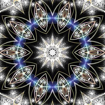 Flux Magnetism by Derek Gedney