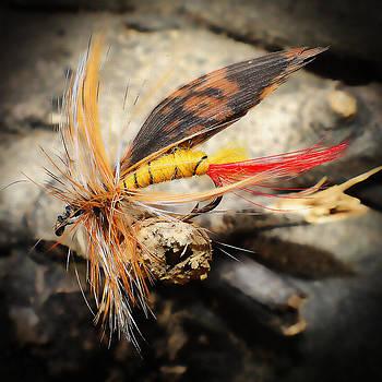 Fly Fishing 2 by Jennifer Muller